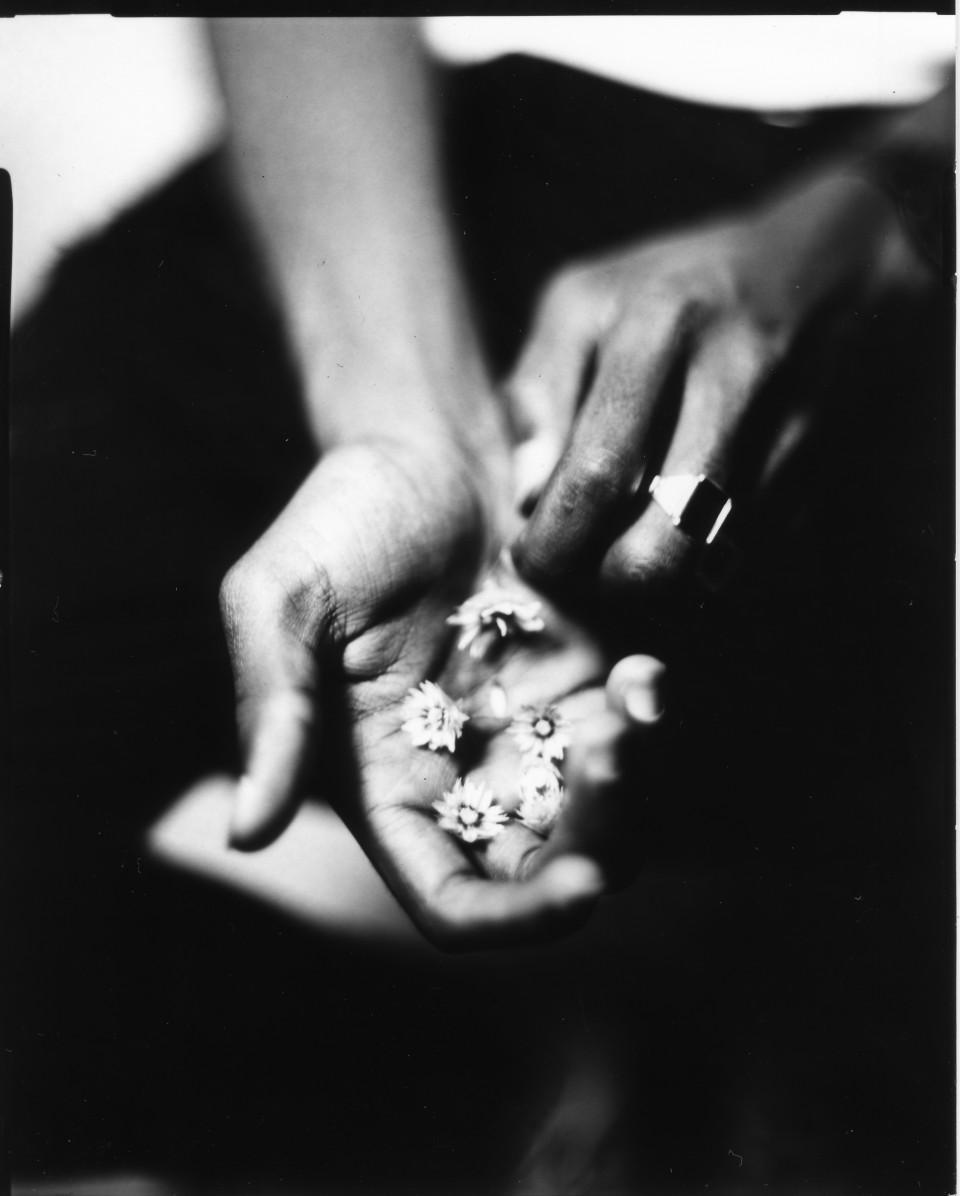 Les fleurs et l'orage